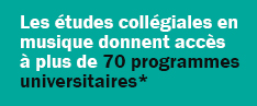 Perspectives universitaires